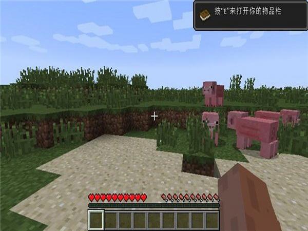 我的世界1.15.0.9 中文版
